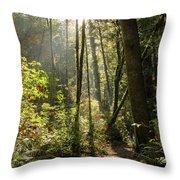 A Narrow Trail Throw Pillow