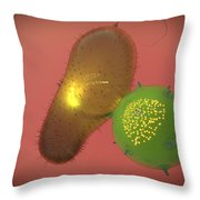 A Natural Killer Cell Injects Toxin Throw Pillow