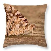 A Neutral Palette Throw Pillow