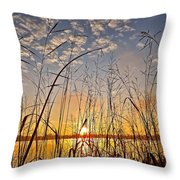 A New Day Begins ... Throw Pillow