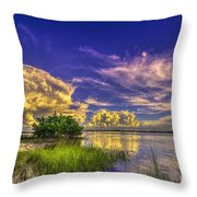 A New Experience Throw Pillow