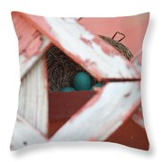 A New Life Is Beginning Throw Pillow