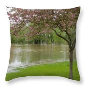 A New Pond Throw Pillow