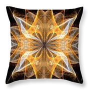 A New Year's Star 2014 Throw Pillow