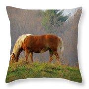A November Horse Throw Pillow