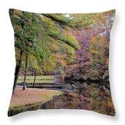A November Memory 2012 - P Throw Pillow