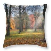 A November Morning Throw Pillow