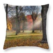 A November Morning Square Throw Pillow