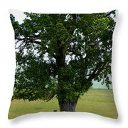 A One Horse Tree And Its Horse Throw Pillow
