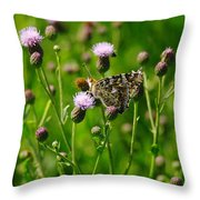 A Painted Lady Throw Pillow