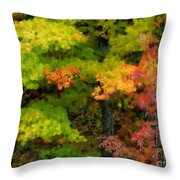 A Painting Adirondack Autumn Throw Pillow