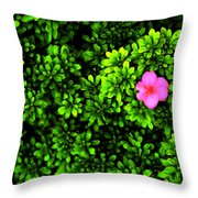 A Painting Azalea On Boxwoods Throw Pillow