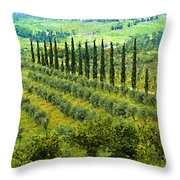 A Painting Tuscan Panoramic 4 Throw Pillow