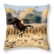 A Pair Of Aleutians Landing Throw Pillow