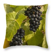 A Pair Of Clusters Throw Pillow by Jean Noren