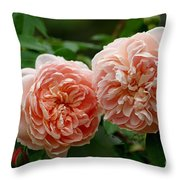 A Pair Of Colette Roses Throw Pillow