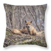 A Pair Of Cute Kit Foxes 2 Throw Pillow