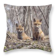A Pair Of Cute Kit Foxes 3 Throw Pillow