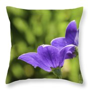 A Pair Of Purple Balloon Flowers Throw Pillow