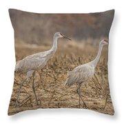 A Pair Of Sandhill Cranes 2014-1 Throw Pillow