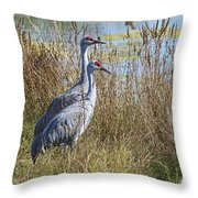 A Pair Of Sandhill Cranes Throw Pillow