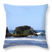 A Pair Of Seagulls On A Rock Throw Pillow