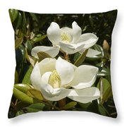 A Pair Of Southern Magnolia Blossoms Throw Pillow