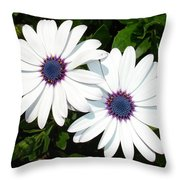 A Pair Of White African Daisies Throw Pillow