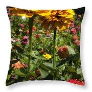 A Pair Of Yellow Zinnias 01 Throw Pillow