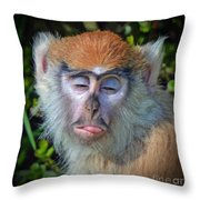 A Patas Baby Monkey Behaving Badly Throw Pillow