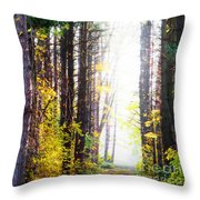 A Path In The Pines Throw Pillow