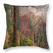 A Path In The Wood Throw Pillow