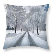 A Path Through The Marsh Throw Pillow