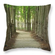 A Path To... Throw Pillow