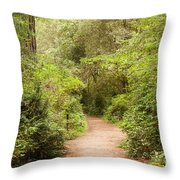A Path To The Redwoods Throw Pillow