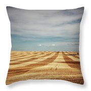A Pattern Of Stripes Across A Farmers Throw Pillow