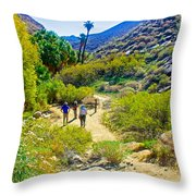 A Pause On Lower Palm Canyon Trail In Indian Canyons Near Palm Springs-california Throw Pillow