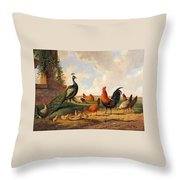 A Peacock And Chickens In A Landscape  Throw Pillow