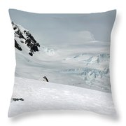 A Penguin's World Throw Pillow