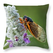 A Perfect Model Throw Pillow