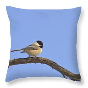 A Perfect Pose Throw Pillow