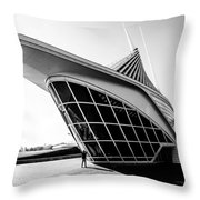A Photographers Perspective Throw Pillow