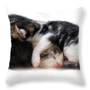 A Pile Of Pussies Throw Pillow