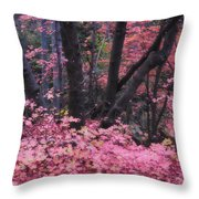 A Pink Autumn  Throw Pillow