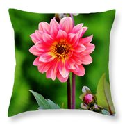 A Pink Flower Throw Pillow