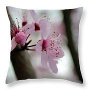 A Pink Flowering Tree Flower Throw Pillow