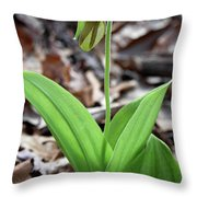 A Pink Ladys Slipper Orchid Prepares Throw Pillow