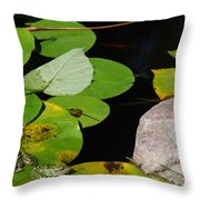 A Place For Everyone Throw Pillow