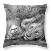 A Place O Be Free Throw Pillow