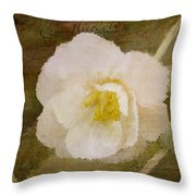 A Place Of Peace - Vintage Art Throw Pillow